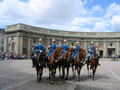 The ceremony of changing the Royal Guard in Stockholm, Sweden — Stok fotoğraf