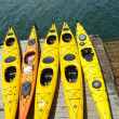 ������, ������: Sea kayaks ready for tourists in Bar Harbor Maine