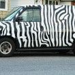 Stock Photo: Zebrpainted van