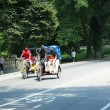 fietsers in central park — Stockfoto