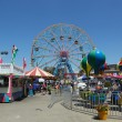 Постер, плакат: Wonder Wheel at the Coney Island amusement park