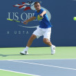 Постер, плакат: Professional tennis player Mikhail Youzhny practices for US Open 2013 at Louis Armstrong Stadium at Billie Jean King National Tennis Center