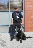 NYPD transit bureau K-9 police officer and German Shepherd K-9 Taylor providing security at National Tennis Center during US Open 2013 — Stok fotoğraf