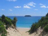Saline beach, St. Barts, French West Indies — Stock Photo