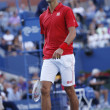 Постер, плакат: Professional tennis player Novak Djokovic during fourth round match at US Open 2013 against Marcel Granollers