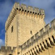 Walls of Papal Palace in Avignon, France — Stock Photo #33679551