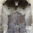 Main entry wooden gate of Papal Palace in Avignon,France — Stock Photo #34287759
