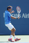Seventeen times Grand Slam champion Roger Federer during his first round match at US Open 2013 — Stock Photo