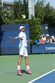 Professional tennis player Jeremy Chardy from France during first round match at US Open 2013 — Stock Photo