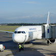 Постер, плакат: Air France Airbus A321 jet at Montpellier Mediterranean Airport