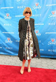 Editor-in-chief of American Vogue Anna Wintour at the red carpet before US Open 2013 opening night ceremony — Stock Photo