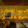 Loma Larga vineyards cellar in Casablanca, Chile — Stock Photo
