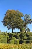 Landscaped Marqueyssac Gardens at Vezac, France — Stock Photo