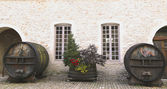 An old painted wine barrels in Chateau de Pommard, France — Stock Photo
