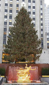 Rockefeller Center Christmas Tree and statue of Prometheus at the Lower Plaza of Rockefeller Center in Midtown Manhattan — Foto Stock