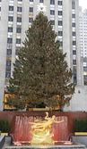 κέντρο ροκφέλερ χριστουγεννιάτικο δέντρο και το άγαλμα του προμηθέα στο χαμηλότερο plaza του rockefeller center στο κέντρο του μανχάταν — Φωτογραφία Αρχείου