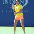 Stock Photo: Professional tennis player FlaviPennettfrom Italy practices for US Open 2013 at Arthur Ashe Stadium