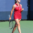 Foto Stock: Professional tennis player ElinSvitolinduring first round match at US Open 2013 against DominikCibulkova