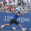 Постер, плакат: Professional tennis player Marcos Baghdatis during third round match at US Open 2013 against Stanislas Wawrinka at Louis Armstrong Stadium