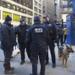 Stock Photo: NYPD counter terrorism officers and NYPD transit bureau K-9 police officer with K-9 dog providing security on Broadway during Super Bowl XLVIII week