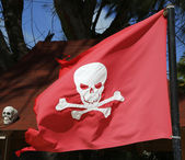 Pirate flag at the Bavaro Beach in Punta Cana, Dominican Republic — Stok fotoğraf