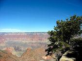 Stor canyon i arizona — Stockfoto
