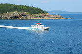Lighthouse tours boat at the Frenchman Bay in Acadia National Park — Stock Photo