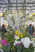 The Secret Garden theme flower decoration during famous Macy s Annual Flower Show — Stock Photo