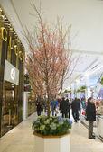 Tajná zahrada téma květinová výzdoba s třešeň během slavné macy s každoroční květinová show — Stock fotografie
