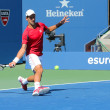 Постер, плакат: Professional tennis player Novak Djokovic practices for US Open 2013