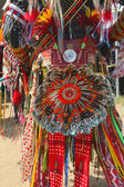 Detail of the single feather bustle of a men s traditional dance Native American Pow Wow outfit — Stock Photo