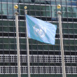 United Nations Flag in the front of UN Headquarter in New York — Stock Photo #45560153