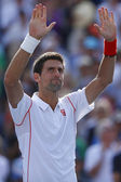 Professional tennis player Novak Djokovic celebrates victory after semifinal match at US Open 2013 — Stok fotoğraf