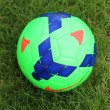 Постер, плакат: Nike soccer ball on grass