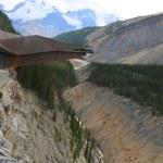 Glacier Skywalk in Jasper National Park — Stock Photo #50512547