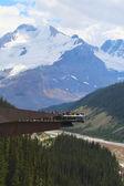 Glacier Skywalk in Jasper National Park — Stock Photo