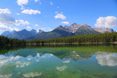 Reflection at Herbert Lake in Banff National Park, Alberta, Canada — Stockfoto