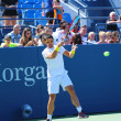 Professional tennis player Janko Tipsarevic practices for US Open 2013 at Billie Jean King National Tennis Center — Stock Photo #50775521