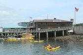Turistas andando de caiaque de mar em bar harbor — Foto Stock