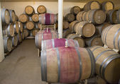 The cellars of Newton Winery in Napa Valley — Stockfoto