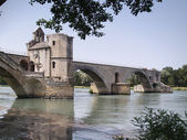 Pont d'Avignon — Stock Photo
