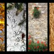 Stock Photo: Four Seasons
