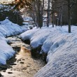 Frozen river in winter and sunlight — Stock Photo #16941365
