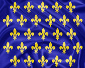 Old french flag, Fleurs de lis — Stock Photo