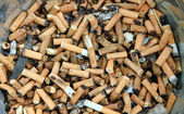 Cigarette Butts Background — Stock Photo