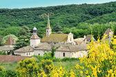Monastery of Valbonne in Gard Provencal, France — Stock Photo