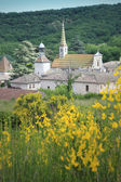 Monastery of Valbonne in Gard Provencal, France — Stock Photo