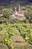 Monastery of Valbonne with his vinyard — Stock Photo