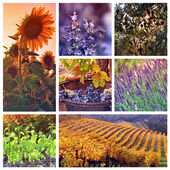 Colors of Provence, France — Stock Photo