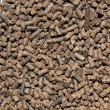 Organic fertilizer — Foto de stock #26605577